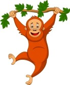 orangutan-clip-art-18599385-cute-orangutan-cartoon-hanging-on-a-tree-branch