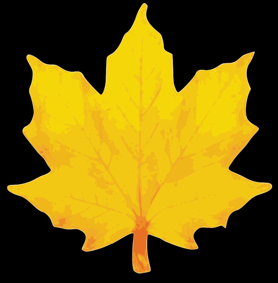 fall-leaves-clip-art-32